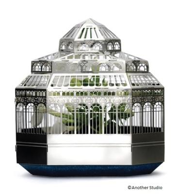 terrarium 1