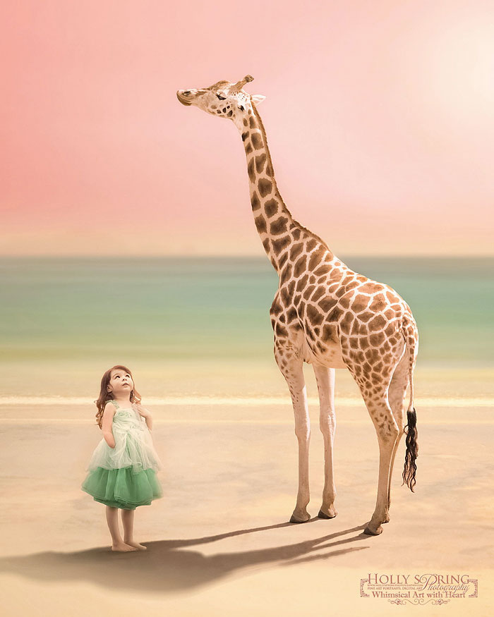 ©Holly Spring (Photographer's Note: the last image of the Giraffe showing my daughter with the wrong limb difference is intentional for creative purposes and continuity of light and narrative. This image was awarded a Gold at the prestigious NZIPP Epson Iris Awards this year.)