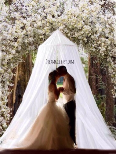 Outdoor wedding? DreamReel has just the thing! You can get married under this barely-disguised (and misspelled) mosquito net!