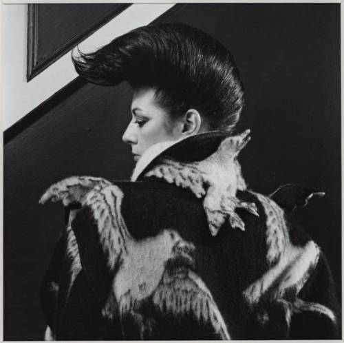Diane Benson 1980 Robert Mapplethorpe 1946-1989 ARTIST ROOMS  Acquired jointly with the National Galleries of Scotland through The d'Offay Donation with assistance from the National Heritage Memorial Fund and the Art Fund 2008 http://www.tate.org.uk/art/work/AR00203