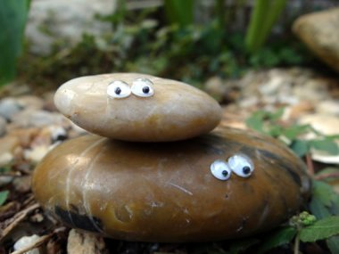 I love how they call two rocks glued together with googly eyes