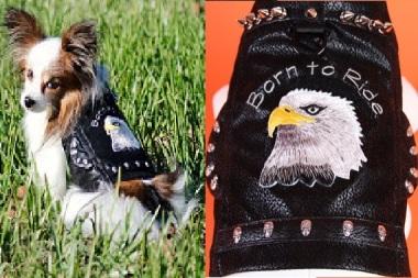 Very intimidating tiny dog leather jacket. By JustForBella