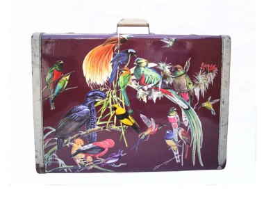 """Upcycled"" suitcase covered in decoupaged birds for $654. By uoldbag"