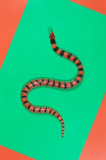 snake 1d