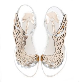 shoe 3aaa