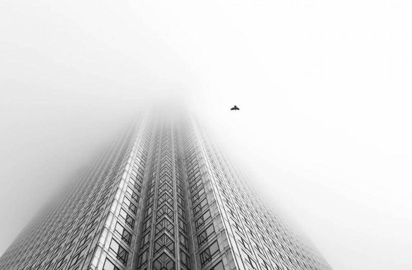 """Free Bird,"" London, England, by Chaitanya Deshpande"