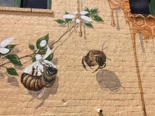 bees-6