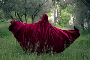 You could make quite an entrance in this gorgeous cape! Of course, you'd also sweep the floors every time you took a step, but it's really spectacular. By CostureroReal