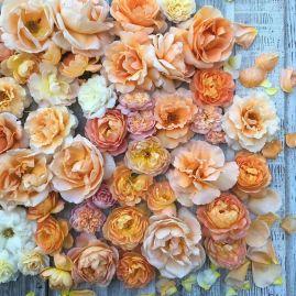 flower-8a