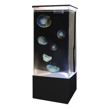 Sunset Marine Labs 20 Gallon Jelllyfish Aquarium ($1,600) This is honestly the first thing I'd buy if I won the lottery.