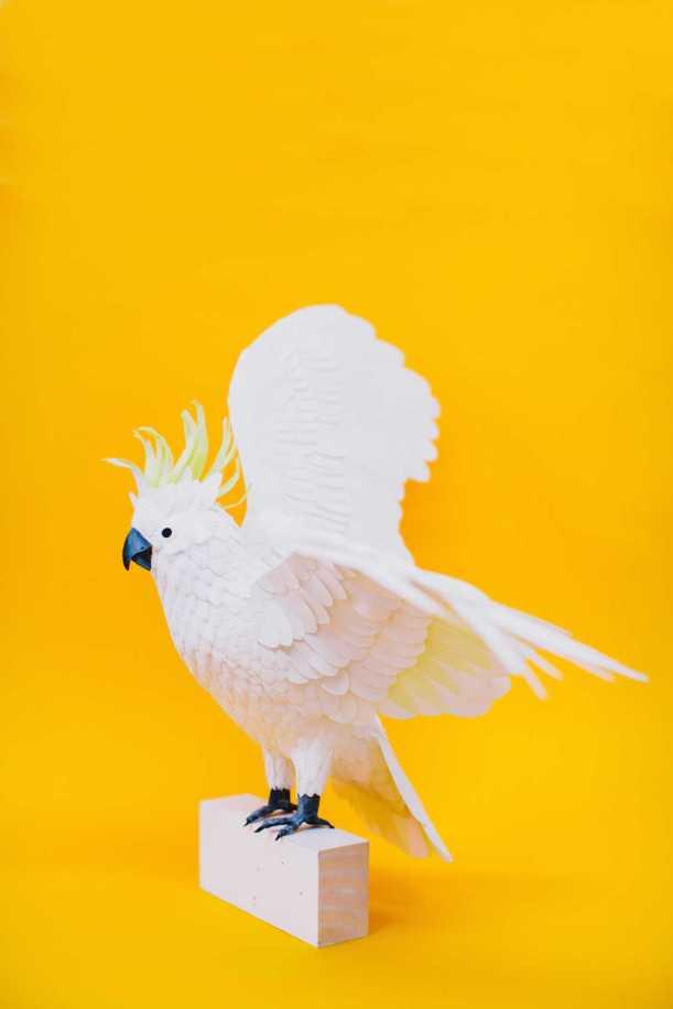 paper-bird-1