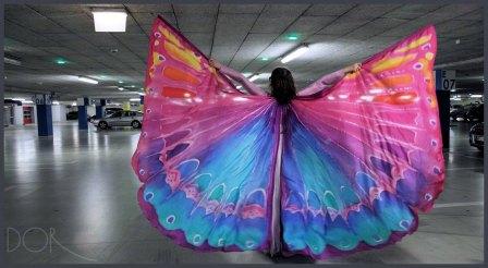 wing-2b