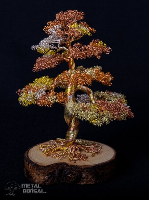 bonsai 3