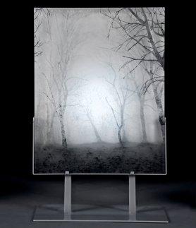 mist 6